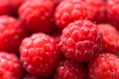 Fresh fruits, organic raspberries from local farm Royalty Free Stock Image