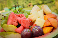 Fresh fruits. Fresh organic fruits in watermelon royalty free stock photos