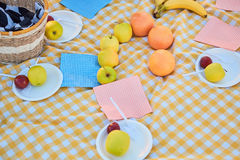 Fresh fruits on picnic cloth. Stock Image