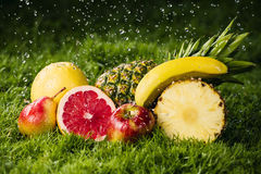 Fresh fruits in the rain. Fresh fruits on the grass in the rain Royalty Free Stock Photos