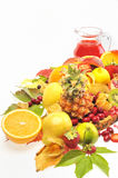 Fresh fruits and red juice. Isolated on white Royalty Free Stock Image