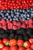 Fresh fruits in a row. Fresh fruits like strawberries, blueberries, red currants and blackberries in a row Stock Photo