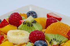 Fresh fruits salad. Bowl with fresh fruits salad isolated on white royalty free stock photo