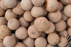 Fresh fruits of Sapodilla Stock Images