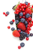 Fresh fruits in scoop. Royalty Free Stock Photo