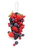 Fresh fruits in scoop. Royalty Free Stock Photography