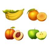Fresh fruits slice realistic juicy healthy vector illustration vegetarian diet freshness lemon dessert Stock Photo