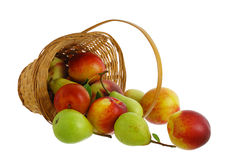 Fresh fruits spilled from interwoven basket Stock Photos