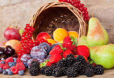 Fresh Fruits in Summer. Freshly harvested seasonal Fruits, with a Basket Stock Image