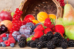 Fresh Fruits in Summer. Many different European Fruits in Summer Season Stock Photography