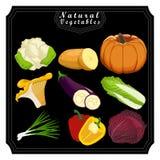 The fresh fruits stock illustration