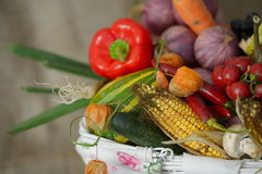 Fresh fruits and vegetables. In the basket stock photos