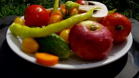 Fresh fruits and vegetables from a home garden. stock video footage