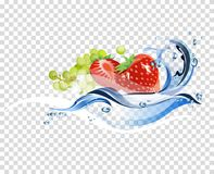 Fresh fruits water Stock Photography