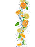 Fresh fruits with water splash. Stock Image