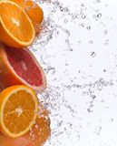 Fresh fruits with water splash Royalty Free Stock Image