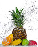 Fresh fruits with water splash Stock Photo