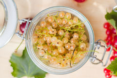 Fresh fruits white red currants jars preparations stock photo