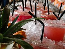 Fresh fruity cold drinks, displayed at a table full of ice, aloe verra plants and fruit stock images