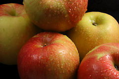 Fresh Fuji Apples. Fresh, wet, colorful, Fuji Apples royalty free stock photos