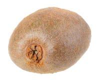 Fresh full fruit of kiwi Royalty Free Stock Images