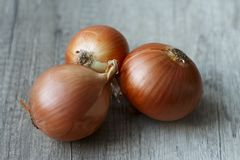 Fresh, full of vitamins onions lay on the table. Onions lay on the wooden table Royalty Free Stock Photos