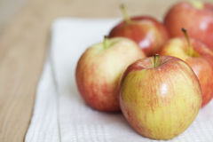 Fresh gala apple Stock Photography