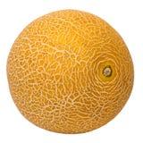 Fresh galia melon isolated on a white background. Royalty Free Stock Images