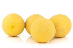 Fresh galia melons Stock Image