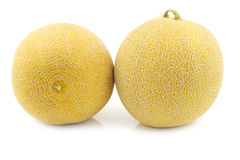 Fresh galia melons Stock Photo