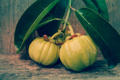 Fresh garcinia cambogia on wooden background. Vintage tone. Royalty Free Stock Photos