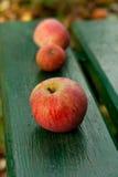 Fresh garden apples. Vertical, close up Royalty Free Stock Photos