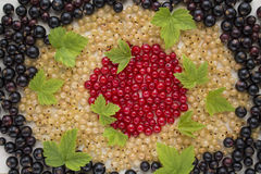 Fresh garden berries, currant, red, white and black. Fresh garden berries, currants, red, white, and black scattered around Stock Image