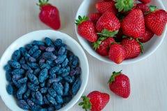 Fresh garden berries Stock Image