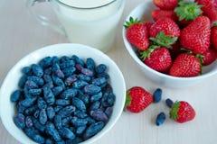 Fresh garden berries Stock Images