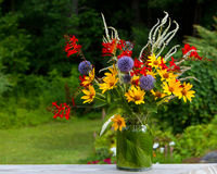 Fresh garden bouquet. Freshly picked perennial garden flowers handsomely arranged in a bouquet. Horizontal Stock Image