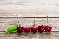 Fresh garden cherry Stock Image
