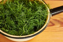 Fresh garden dill in a colander on wooden table. Closeup, detail, crop, copy sapce royalty free stock images