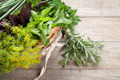 Fresh garden herbs in basket Stock Photos