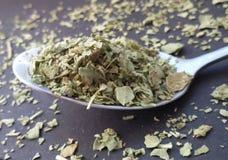 Fresh garden herbs. Marjoram on spoon over kitchen table. royalty free stock photos