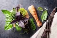 Fresh garden herbs in mortar Stock Photos