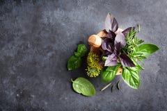 Fresh garden herbs in mortar Royalty Free Stock Image