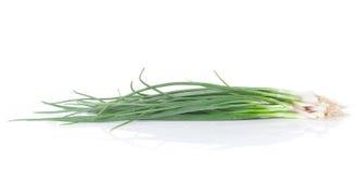 Fresh garden herbs. Spring onion Royalty Free Stock Photography