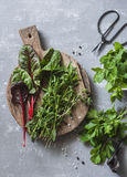 Fresh garden herbs - tarragon, chard, mint, celery, spinach, thyme on a gray background, top view. Flat lay stock image