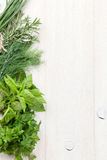Fresh garden herbs on wooden table Royalty Free Stock Image