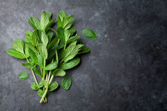 Fresh garden mint. On stone table. Top view with copy space stock photos