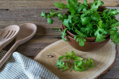 Fresh garden organic arugula, ruccola  in bowl  on rustic background ready for salad. Royalty Free Stock Photo