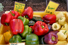 Fresh garden peppers at a farmer's market Royalty Free Stock Photos