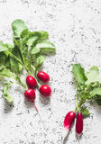 Fresh garden radish on a light background, top view. Free space for text. Stock Images