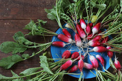 Fresh garden radish. Top view. Fresh garden radish with a tops of vegetable on a wooden table. Top view Stock Photos